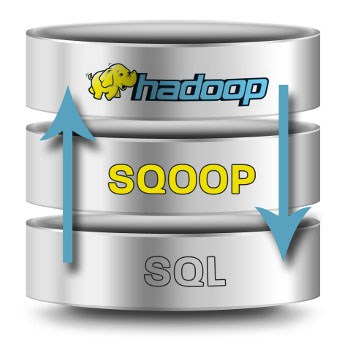 How to Sqoop an RDBMS Source Directly to a Hive Table In Any Format